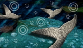 fishwcircles